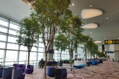 Changi Singapore Terminal 4 Misting